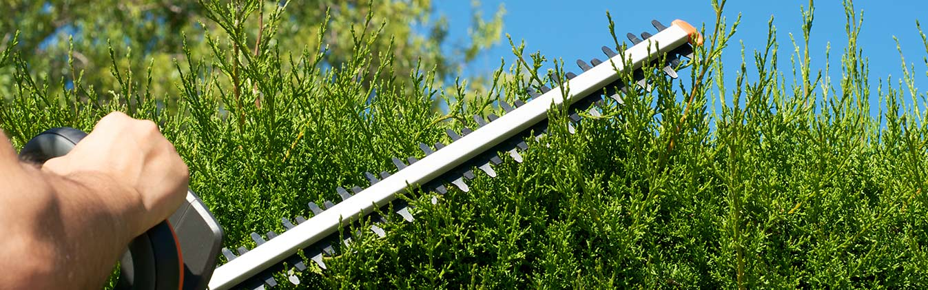 Our experts will improve your garden in no time